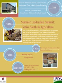 Summer Summit downloadable Flyer